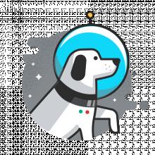 Spacedog.png (900×900 px, 134 KB)