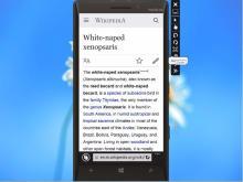 bs_winphone_Mobile_Nokia Lumia 930-8.1-1080x1920.jpg (503×670 px, 69 KB)