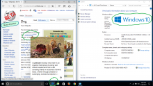 Windows 10 Part 1 Edge.png (768×1 px, 370 KB)