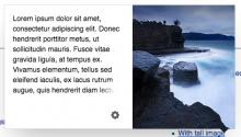 Chrome (56.0.2924.87).png (268×471 px, 128 KB)
