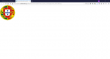 Screenshot (2).PNG (860×1 px, 64 KB)