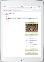 ja_iPadAir2_8.png (1×1 px, 718 KB)