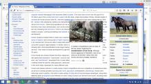 Screenshot (3).png (768×1 px, 445 KB)