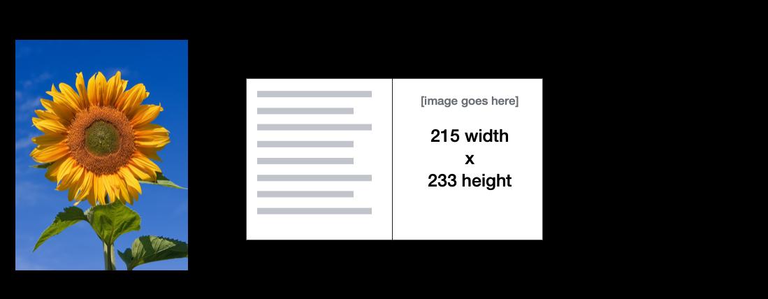 image.png (428×1 px, 207 KB)