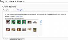 AsirraScreenshot.png (426×728 px, 55 KB)