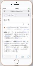 ja_iPhone8_11.png (1×828 px, 645 KB)